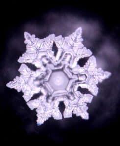 Trinkwasserwirbler Empowerment Emoto Kristallbild 1